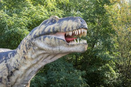 The head of the prehistoric Tyrannosaur rexe lizard.