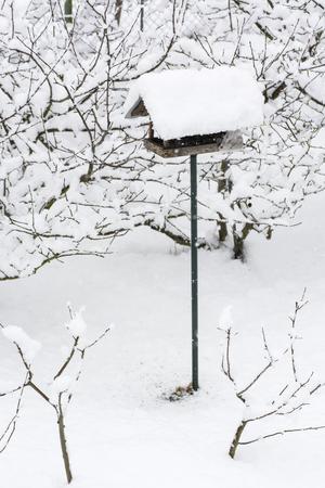 Snowy Feeder for Birds. Stok Fotoğraf