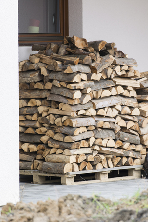 A pile of wood prepared for the winter. Imagens