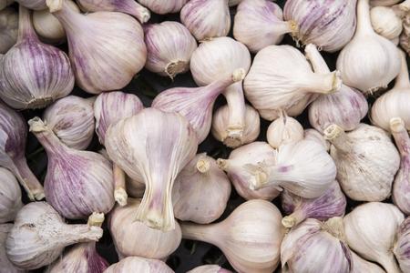 Pile of garlic.
