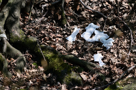 Discarded papers in the forest. Archivio Fotografico