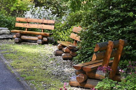 Green benches from tree trunk and resting place.