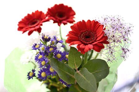 Red gerbera flowers in bouquet. Banco de Imagens