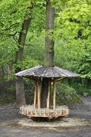 A wooden feeder around a tree with a roof.