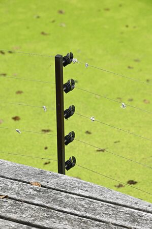 Electric fence with insulators outdoors.