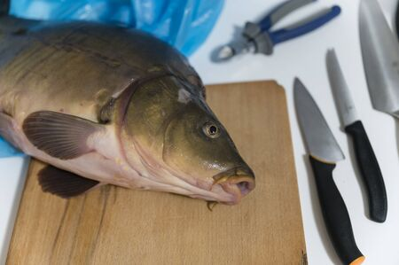 Carp lying on wooden board and knives. Stock fotó