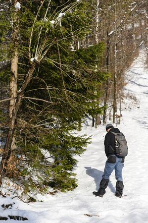 Man urinating in winter in snow on mountains in nature near forest.