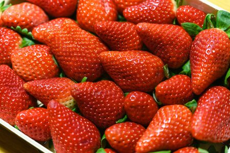 Ripe Large Red Strawberries Stacked Side by Side. 写真素材