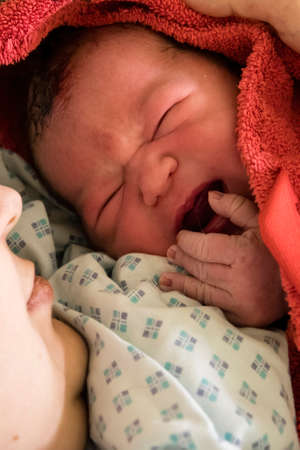 Dark-haired baby after birth crying at mother and wrapped in a red towel. Standard-Bild
