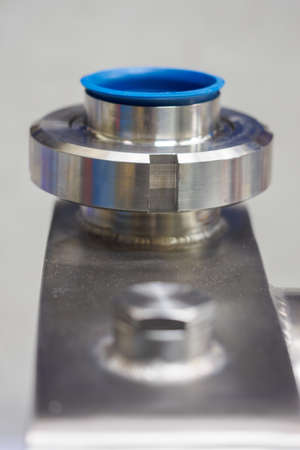 Flange dairy fitting with blue plastic seal.