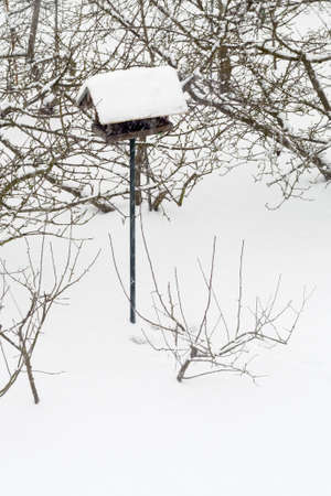 Bird feeder on a stick in the snow near the trees.