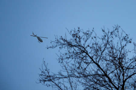 Helicopter flying over a tree without leaves. Banco de Imagens