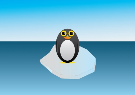 floe: Good penguin standing on an ice floe in the ocean