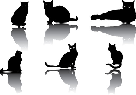 companions: Set of different cats silhouettes for design use Illustration