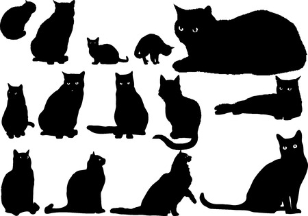 lines: Illustration with silhouettes of cats on a white background