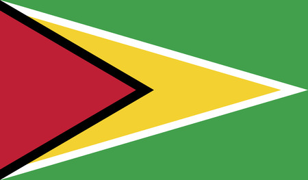 recognized: Guyana.vector flag of the independent state