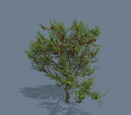 oversized: 3D rendered illustration of a tree. Isolated on a homogeneous background Stock Photo