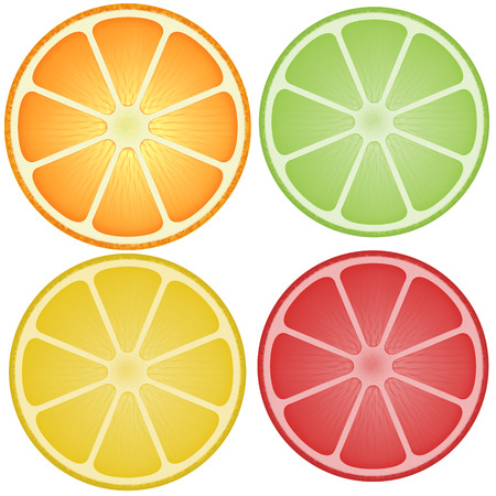 Healthy food. Grapefruit, Lemon, Orange, Lime fruit. Vector illustration. Flat design. Lifestyle concept. Stock Photo