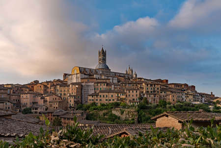 Panoramic view over the old town of Siena, Tuscany Region, Italy