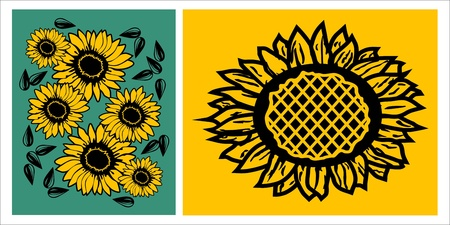 image of sunflower and sunflower seeds, vector illustration Vector