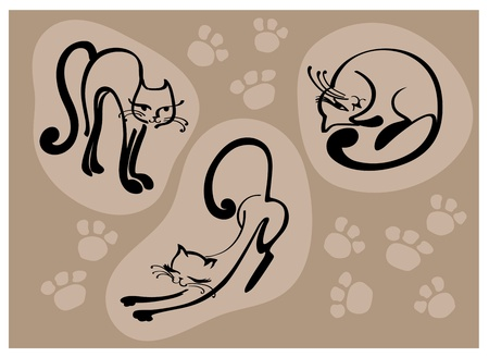 elegant beautiful cats, stylized cat, vector illustration Vector