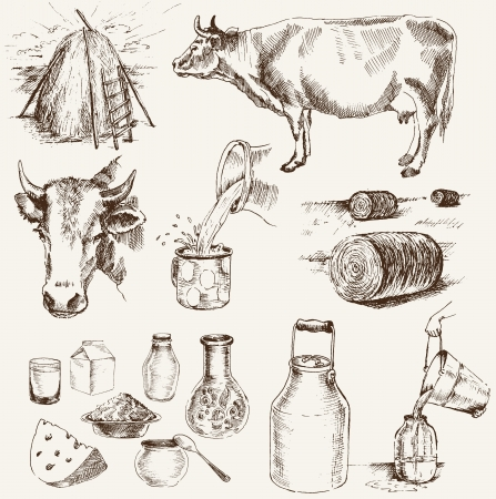 milk pail: cow and milk products  set of vector elements Illustration
