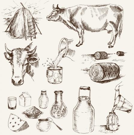 koe en melkproducten set van vectorelementen