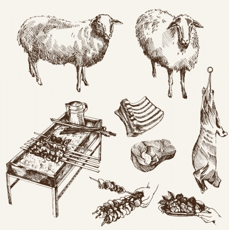 roast lamb: sheep breeding  set of  sketches on a white background Illustration
