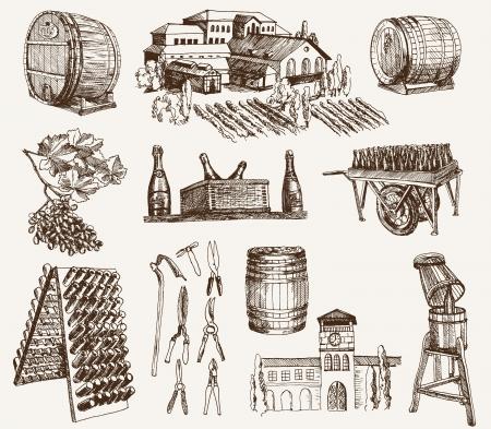 스파클링 와인의 생산을 포도주 양조 일러스트