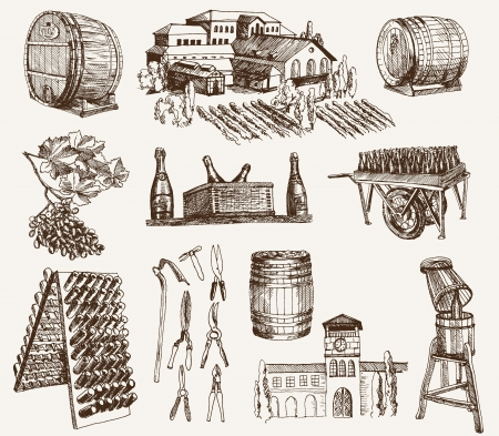 winemaking  the production of sparkling wines Vector