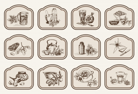 decoction: plants and herbs in folk medicine  set of vector sketches Illustration