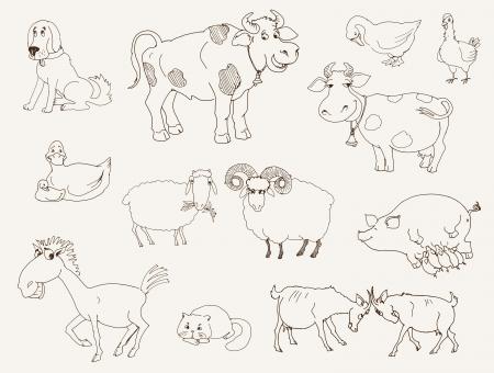 piglets: farm animals  set of vector sketches