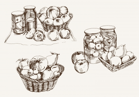 canned fruit: fresh and canned fruit  set of vector sketches