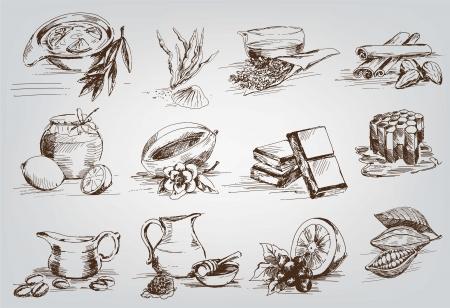 vector schetst natuurlijke ingrediënten die worden gebruikt in de farmacologie
