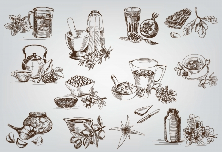 infusion: plants and herbs in folk medicine  set of vector sketches Illustration