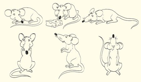 cartoons outline: rat and cheese  set of vector sketches