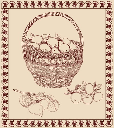 Basket with tangerines  vector sketch Vector