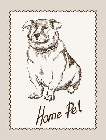 home pet dog.  Illustration