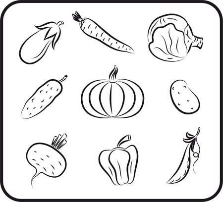 gherkin: vegetables set sketches Illustration