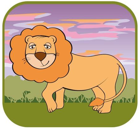 tawny: image of a lion in the wild
