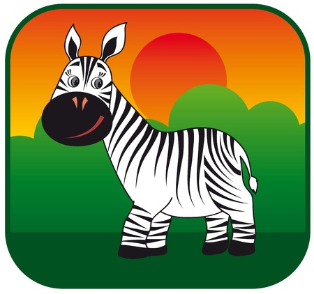 travel locations: image of a zebra in the wild
