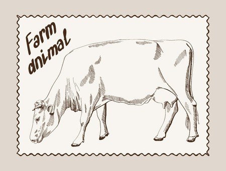 ruminant: sketch of a cow, made by hand