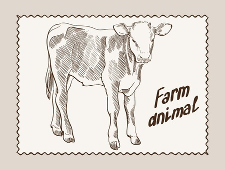 vector sketch of a cow, made by hand