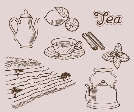 cameron highlands: vector set of icons on a tea theme