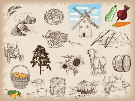 sunflower drawing: Farm animals sketches objects livestock breeding plants set