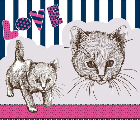 grey cat: home pet cat. vector sketch on grey background Illustration