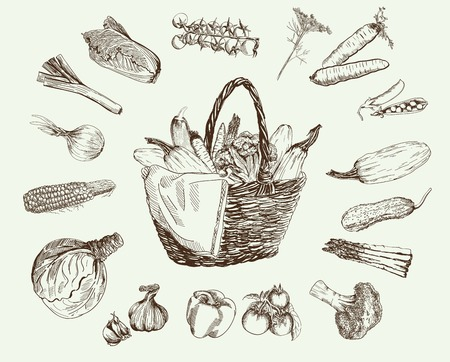 harvest basket: set of vector icons on the theme of vegetables