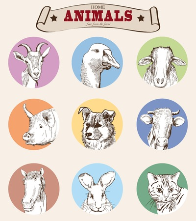 head of farm animals. set vector sketches 矢量图像