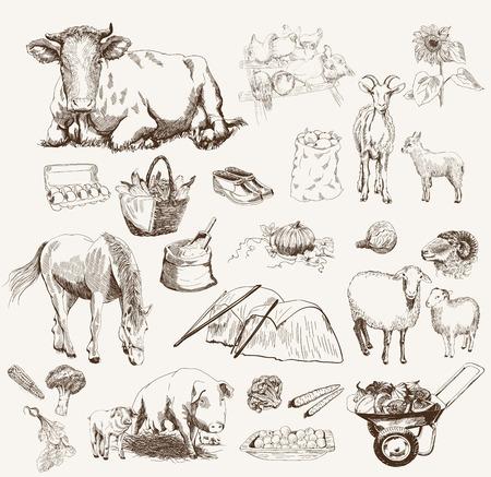 roost: Farm animals sketches objects livestock breeding plants set