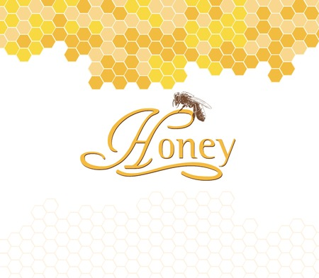 yellow flower: Honeybees on a comb. Hand drawn illustrations